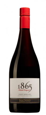1865 Pinot Noir San Pedro